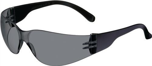Schutzbrille NOW Daylight Basic PC-Scheibe