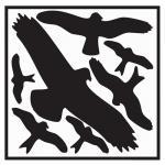 Folie Vogelschutzset 320x290mm